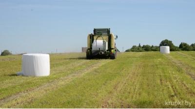 Аграрии Крупщины приступили к заготовке кормов