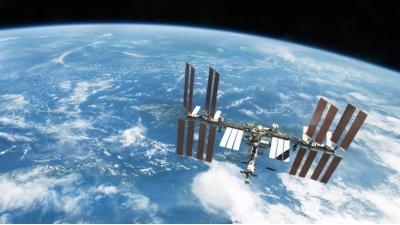 На внешней обшивке МКС обнаружили живые организмы