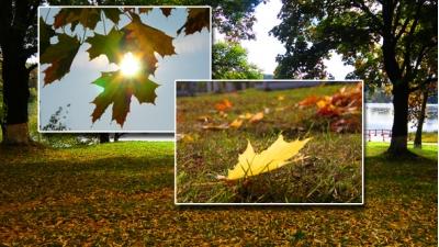 Осень в Крупках
