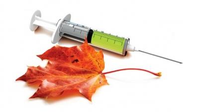 Пришла пора сделать прививки против гриппа